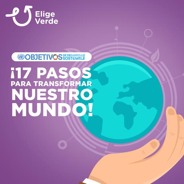 17 PASOS PARA TRANSFORMAR EL MUNDO